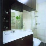 Master bathroom royalty free stock image