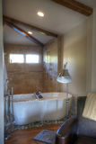 Master Bathroom Bedroom. Tub and shower details in a master bedroom stock image