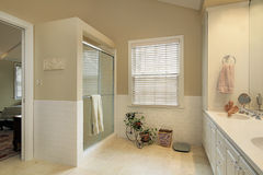 Master bathroom with gold walls Stock Photos
