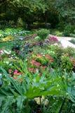 Master Botanical Flower Garden Stock Images