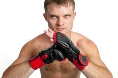 Master of boxing isolated on white background Royalty Free Stock Photos