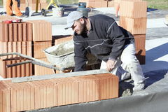 Master bricklayer Stock Image