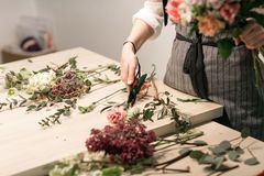 Master class on making bouquets. Summer bouquet. Learning flower arranging, making beautiful bouquets with your own. Hands Stock Image