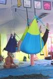 Master classe di yoga della mosca Immagini Stock