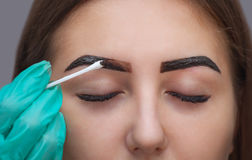 Master corrects makeup, it gives shape and color the eyebrows henna in a beauty salon, Spa. Stock Photos