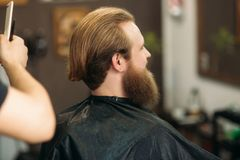 Master cuts hair and beard of men in the barbershop, hairdresser makes hairstyle for a young man.  stock photography