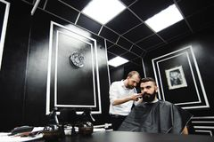 Master cuts hair and beard of men in the barbershop, hairdresser. Makes hairstyle for a young man royalty free stock image