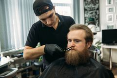 Master cuts hair and beard of men in the barbershop, hairdresser makes hairstyle for a young man.  royalty free stock images