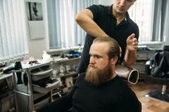 Master cuts hair and beard of men in the barbershop, hairdresser makes hairstyle for a young man.  stock photo