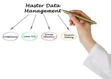 Master Data Management. Diagram of Master Data Management Royalty Free Stock Image