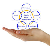 Master Data Management Stock Photo