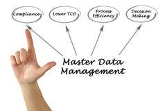 Master Data Management. Presenting Diagram of Master Data Management Royalty Free Stock Photo
