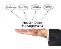 Master Data Management Royalty Free Stock Images