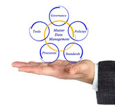 Master Data Management. Presenting diagram of Master Data Management Stock Photography