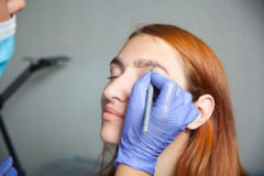 Master on the eyebrows grafted eyebrow royalty free stock images
