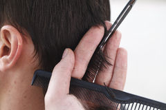Master hairdresser and stylist in the working process stock photography