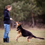 Master and her obedient  dog Royalty Free Stock Image