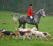 Master with hounds. Fox hunting is a topic which raises many social issues and is still unresolved in the UK . It is sometimes taken to show the difference