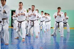Master karate Royalty Free Stock Images
