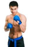 Master of karate Royalty Free Stock Photos