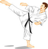 Master of karate (martial art) Royalty Free Stock Images