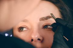 Master makes eyebrows. Eyebrow lamination. The girl makes eyebrows in the salon. Beautiful eyebrow shape. Professional eyebrow royalty free stock images