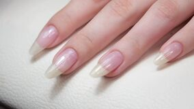 The master makes hygienic manicure to the client in the nail salon. Beautiful manicured nails on female hands.