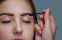 Master makeup corrects, and gives shape to pull out with forceps previously painted with henna eyebrows in a beauty salon. Stock Image