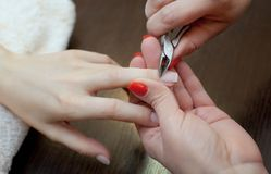 The master of the manicure cuts the cuticles on the hands in the beauty salon. Royalty Free Stock Photos