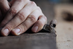 The master`s hands work with a wooden surface, a professional does wood crafts Stock Image