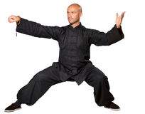 Master of tai-chi. The man does an element tai-chi stock images