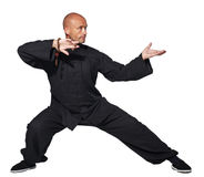 Master of tai-chi Royalty Free Stock Image