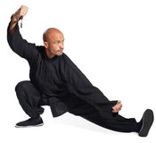 Master of tai-chi. The man does an element tai-chi Royalty Free Stock Image