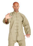 Master of tai-chi Stock Photos