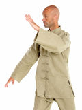 Master of tai-chi Stock Photo