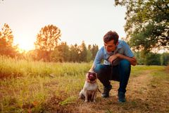 Master walking and hugging pug dog in autumn forest. Happy puppy sitting on grass. Dog love. Best friends stock image