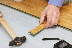 Master works on laying laminate panels Royalty Free Stock Image