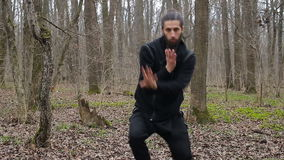 Master wushu and tai chi practiced in the forest in spring stock footage