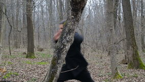 Master wushu and tai chi practiced in the forest in spring stock video footage