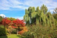 A masterpiece of landscape architecture - Sigurta Park Stock Photography