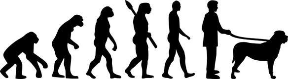 Mastiff evolution darwin. With silhouettes Royalty Free Stock Photo