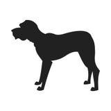 Mastiff Vector Black Silhouette Stock Image