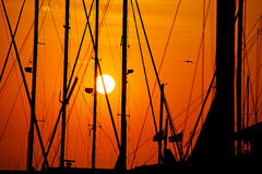 Masts of boats at sunset Royalty Free Stock Images