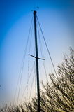 Masts and Branches Stock Photography