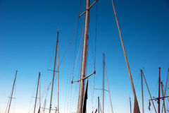 Masts of sailboats Stock Image