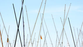 Masts of sailboats Stock Photography