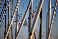 Masts of sailing boats. In marina royalty free stock photo