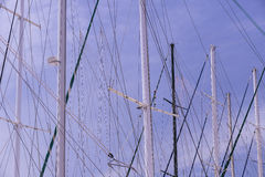 Masts of ships and. Sailboats against the sky Royalty Free Stock Images