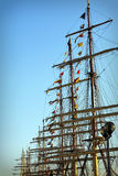 Masts of Tall ships in port. Tall ships masts in early morning clear sky Royalty Free Stock Photos