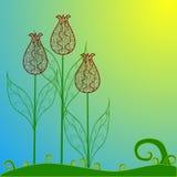 maswerków tulipany Fotografia Stock